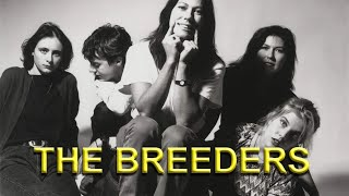 THE BREEDERS - Cannonball Live at The Pinkpop Festival