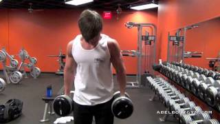 Bicep Workout Preview