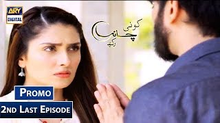 Koi Chand Rakh 2nd Last Episode | Promo | ARY Digital Drama