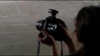 LETZTE INSTANZ Snippet TRAUM IM TRAUM Video