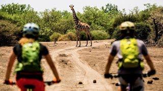 Botswana MTB Safari: Spotting African Wildlife by Bike