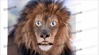O leão e o coelho saltitão - Adaptação