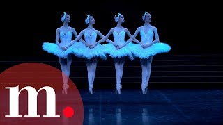Swan Lake, Tchaikovsky - Dance of the Little Swans