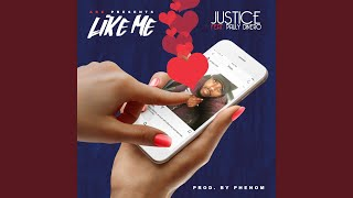 Like Me (feat. Pauly Dinero)