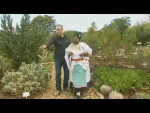 The Gurus Explore 2008 South Africa 2