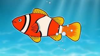 Aprenda os nomes dos animais marinhos, desenho para crianças
