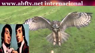 DENY E DINO (Dupla da música  Coruja)