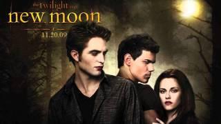 [New Moon Soundtrack] #12:Ok Go - Shooting The Moon