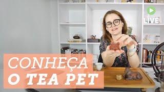 TEA PET: o acessório de chá mais curioso que você precisa conhecer ? #chá