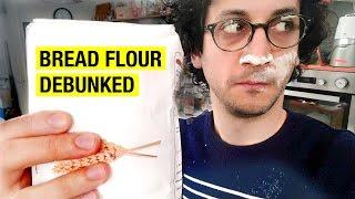 Which Flour for Baking Bread ? Sourdough Bread Series