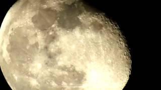 Wicked Moon Zoom - Nikon P900