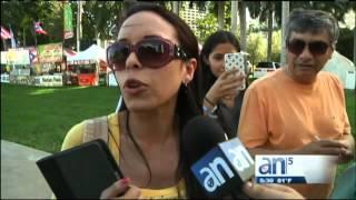 Miami cerrará el año con concierto de Pitbull - América TeVé