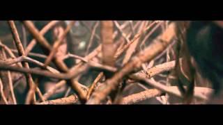 Evil Dead (2013) - Tree Rape scene width=