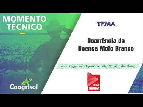 MOMENTO TÉCNICO COAGRISOL - MOFO BRANCO