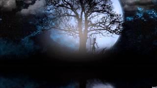 Nightcore  -  Hey Brother ( Avicii )