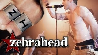 Zebrahead - I'm Just Here For The Free Beer (Official Live Video)