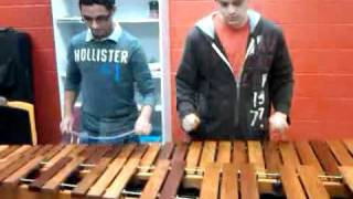 Through The Fire And Flames(Marimba)