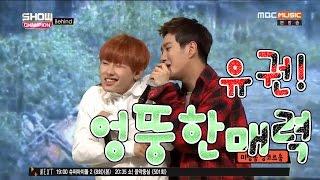 Block B:) 이런저런 엉뚱한 귀요미 권을 모아보았습니다. (feat. 냉장고)