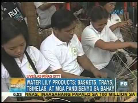 water lily products las pinas