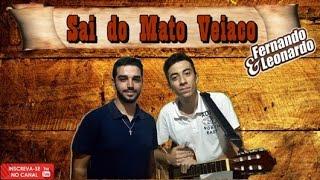 Fernando & Leonardo - Sai do Mato Veiaco (COVER) / Léo & Raphael
