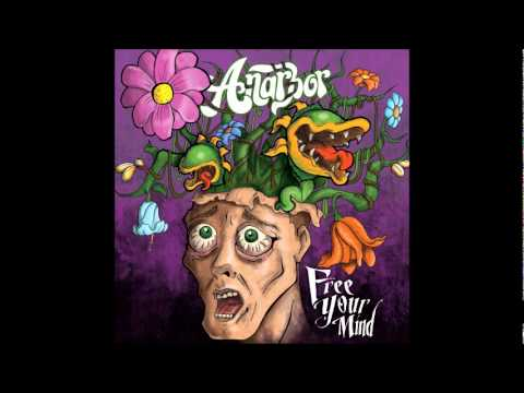 anarbor-passion-for-publication-hopelessrecords