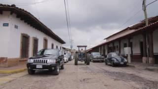 ECOS | Manzanilla de la Paz
