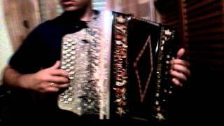 Pedro Vaz concertina - Desfolhada