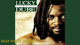 LUCKY DUBE — Reap What You Sow