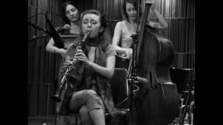 Shake 'Em Up Jazz Band - Sugar Blues
