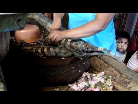 Managua – Mercado Oriental (iguana)