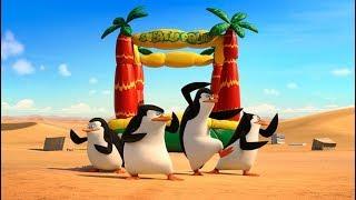 Penguins of Madagascar | Episode 1 Fort Knox WiiU | ZigZag Kids HD width=