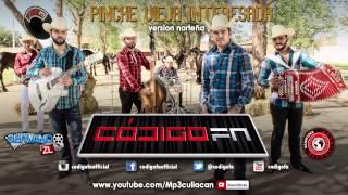 Codigo FN - Pinche Vieja Interesada (Version Norteña) (Estudio 2015)