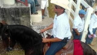 SOY DE A CABALLO
