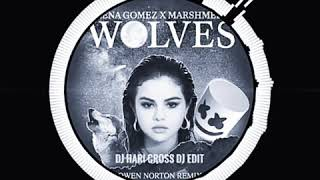 Wolves Remix By DJ HARI