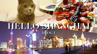 Travel Vlog #1: Shanghai 吃吃喝喝上海行|Nabibuzz娜比