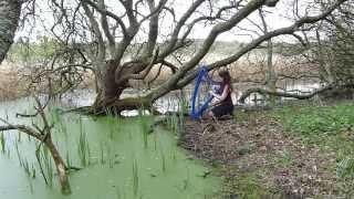 FAIRY TAIL - Celtic song - harp / harpe