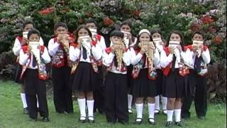 """Grupo Musical Infantil """"Amadeus""""  - SAYA DE NAVIDAD"""
