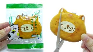 Cut Open Fat Cat Cracking Squishy [What's Inside]