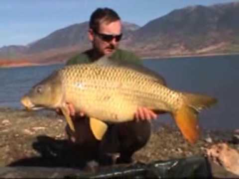 Moroccocarpfishing part 2