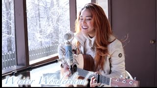 Shane Ericks - Winter Wonderland (Cover)