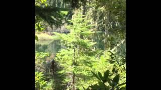 Fishing  Oregon High Cascade Lakes