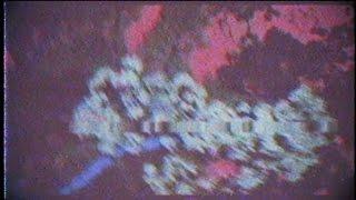 Chris Travis ft. Bones - We OD