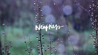 Nearness (Song Story) // Jenn Johnson // We Will Not Be Shaken