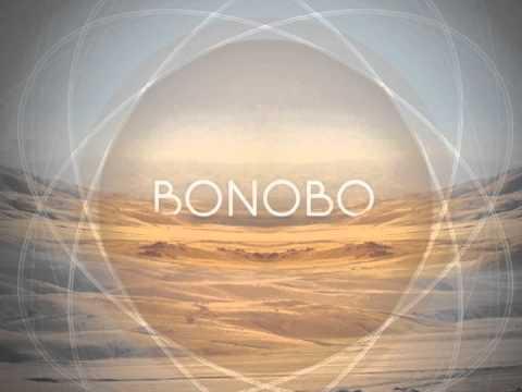 Bonobo sheet music - 2 part 9