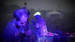 Shpongle Live - Camp Bisco 2011