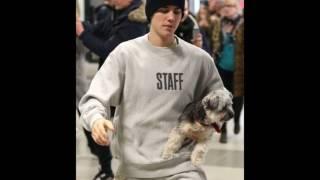 DJ Snake ft Justin Bieber   let me love you