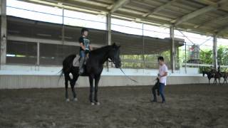 First time canter with coach control
