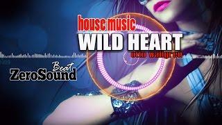 Wild Heart - Otto Wallgren (House Music)