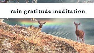 Rain Gratitude Meditation