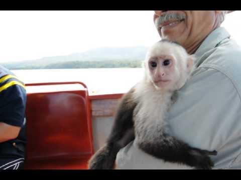 Sailing with Cajun at Lake Nicaragua sailing tour